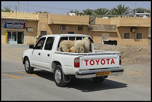 Pickup in Bahla, Oman