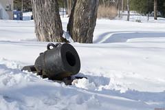 Canon, Bois de Coulonge, Québec, Canada - 5433 (rivai56) Tags: villedequébec québec canada ca canon dun autre époque ville de boisdecoulonge sonyphotographing