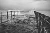 (wickedmartini) Tags: weather lake waves monochrome blackandwhite storm lakeontario greatlakes rochesterny roc fujifilm fujix