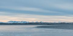 Lofoten Pastels (Keith - Glasgow) Tags: arctic d850 winter lofoten landscapes rocks norway wildphotographyholidays wintersun travel wph straumsbukta shore sea seaice coast ice nordland no