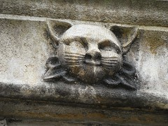 Feline face (Dun.can) Tags: gargoyle leicestercathedral leicester cat face sculpture medieval