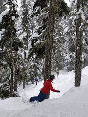 Dave and Catrin in the trees (Ruth and Dave) Tags: dave catrin father daughter skier snowboarder whistler whistlerblackcomb blackcombmountain inthespirit crystalzone gladedrun offpiste skirun skiresort snowboarding