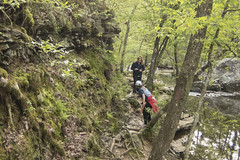 RED02619 (David J. Thomas) Tags: petitjeanstatepark morrilton arkansas hiking caving bedrock forests trees rocks streams creeks waterfalls cedarcreek rockhousecave asgcsymposium