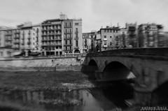 Pont de Pedra (esteveb) Tags: d7000 lensbaby softfocus ultrawide 21mm monochrome girona pontdepedra