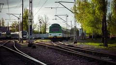 Lokomotywownia (Rafał Jędrasiak) Tags: locomotive lokomotywa train pociag warszawa warsaw polan polska 2018 track infrastructure railway pkp koleje mazowieckie 21300616