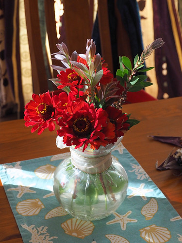 Zinnias – Red Moon Sanctuary, Redmond, Western Australia