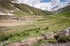 IMG_2742.jpg (Hans Van Loy) Tags: alpenmarmot dieren gewervelden knaagdieren nationaleparken parcnationalmercantour zoogdieren