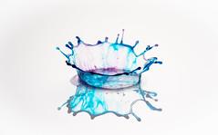 Plop! (susie2778) Tags: olympus omdem1mkii olympusuk splash splashartkit2 phototrigger water waterdrop 60mmmacrof28 olympusm60mmf28macro