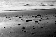 Pebbles (shou yokoya) Tags: beach pebble wave foam sand bw micronikkor 105f28a nikkor