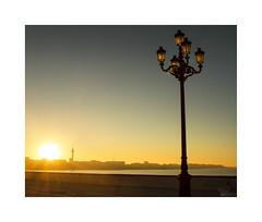 ... (ángel mateo) Tags: ángelmartínmateo ángelmateo cádiz andalucía españa andalusia spain amanecer dawn sunrise campodelsur calma farola contraluz sol mar océano amarillo naranja calm lamppost backlight sun sea ocean yellow orange malecóndecádiz