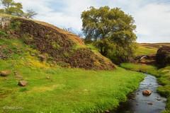Seductive Spring (buffdawgus) Tags: northerncalifornia california spring tabletopmountain landscape buttecounty lightrooom6 canonef24105mmf4lisusm topazsw canon5dmarkiii tablemountain springtime oroville