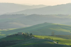 The different layers of Toscany (Arnø N°XX) Tags: val dorcia toscane hills colline green vert tree cyprès cypress