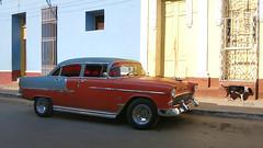 CUBA Trinidad IV (stega60) Tags: cuba trinidad coche oldtimer rojo red azul blue perro dog calle street luz light stega60
