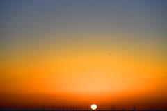 The wind beneath my wings  -  (Selected by GETTY IMAGES) (DESPITE STRAIGHT LINES) Tags: landscape nikon24120mmf4 getty gettyimages gettyimagesesp despitestraightlinesatgettyimages paulwilliams paulwilliamsatgettyimages nikon24120mmf4gedvr botanybay botanybaybroadstairs sunriseoverbotanybay botanybaykent botanybayinbroadstairs bay seaside sunrise thegoldenhour goldenhour magichour themagichour broadstairs kent england coast coastline coastal tide tidal water sea sunlight nikon d850 nikond850 nikkor24120mm nikon24120mm nikongp1 manfrotto tripod despitestraightlines flickr morning ilobsterit