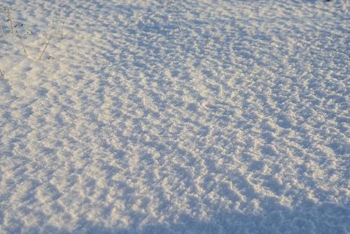 Snow ©  Andrey