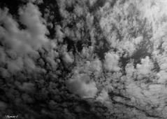 Injected Dreams (that_damn_duck) Tags: blackwhite monochrome sky nikon nature clouds cloud bw blackandwhite