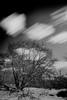 time passes (sami kuosmanen) Tags: kuusankoski kouvola luonto light landscape long lake lumi liike europe exposure expression eerie taivas tree tumma talvi trees nature north suomi sky finland forest photography puu pitkä pilvi valo valotus creative clouds cloud black bokeh big dof dark winter white
