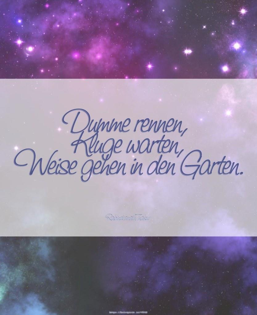 Großartig Kluge Zitate Foto Von Die Weisheit Des Gartens (holospirit) Tags: Gartens