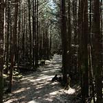 Hike through the Deep Gap Trail thumbnail