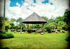 Jublee Recreation Ground, 93450 Kuching, Sarawak https://goo.gl/maps/bWxDgm2HtN92  #travel #holiday #Asian #Malaysia #Sarawak #Kuching #travelMalaysia #holidayMalaysia #旅行 #度假 #亚洲 #马来西亚 #沙拉越 #古晋 #trip #马来西亚旅行 #traveling #马来西亚度假 #公园 #garden #Park #tree #re (soonlung81) Tags: trip outdoor park 沙拉越 古晋 马来西亚 malaysia garden 旅行 kuching 亚洲 asian sarawak 休息站 touristattractions 度假 traveling green restingstop 马来西亚度假 公园 holiday tree 旅游景点 马来西亚旅行 travelmalaysia holidaymalaysia travel