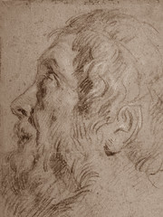VAN DYCK Antoon - Tête d'Homme barbu, de profil (drawing, dessin, disegno-Louvre RF29063) - Detail 2 (L'art au présent) Tags: art painter peintre details détail détails detalles drawings dessins dessins17e 17thcenturydrawings louvre museum paris france dessinshollandais dutchdrawings dutchpainters peintreshollandais antoonvandyck antoon antoine anton book figure figures personnes people man men homme croquis étude study studies sketch sketches pose model portrait portraits face faces visage old elder oldman beardedman beard barbe