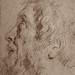 VAN DYCK Antoon - Tête d'Homme barbu, de profil (drawing, dessin, disegno-Louvre RF29063) - Detail 2