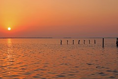 Keep the Light On (Michiale Schneider) Tags: sunset water pier birds pelicans landscape pineland florida michialeschneiderphotography