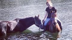 #cuadraelalisal #caballos #horses #paseosacaballo #rutasacaballo #asturias