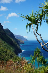 Paradise. (samytux) Tags: kalalauvalley kalalau kalalautrail nāpalicoaststatewildernesspark kauai kauaʻi hawaii trek hike hikingtrail hikewithaview view wonderful ocean turquoise nature ke'ebeach ke'ebeachtohanakapi'aivalley hanakapi'aivalley greencliffs cliff emeraldhuedcliffs naturalbeauty sheercliffs pali paradise northwest northwesternkauaʻi tree sea water sky mountain landscape tropical island sonyilce6500 epz1650mmf3556oss sonya6500 sonyalpha6500 green summer vacation vivid