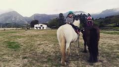 #cuadraelalisal #caballos #horses #clasesdeequitacion #clasesdecaballo #asturias