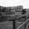 Delta 3200 (tomwatson1987) Tags: boxes fens ilford delta 3200 mamiya c220 mamiyac220 fence