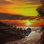 Bali Nights thumbnail