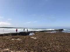 Making Waves - Spanish Point - Ireland (firehouse.ie) Tags: seaweed waves coastline coastal coast seascape seashore atlanticocean shoreline shore sea seaside beaches ireland ocean atlantic beach spanishpoint
