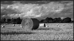 SUMMER ROLLS (J.P.B) Tags: nuages clouds rolls sky monochrome marculescueugendreamsoflightportal blackwhitepassionaward