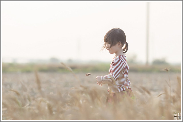 3月台南 親子寫真可以這樣拍 木棉花 蜀葵 小麥 一次讓你拍個夠 (21)