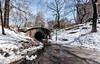 Tunel de Central Park (Perurena) Tags: tunelpaso pasadizo camino path road nieve snow nevado arboles trees naturaleza parque park cielo sky edificios buildings centralpark manhattan nuevayork estadosunidos usa