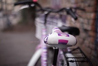 purple & pink _ #39/100 Bike Project