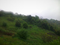 Pluie et brouillard (Gilbert-Noël Sfeir Mont-Liban) Tags: nebel pluie regen brouillard landschaft paysage natur nature kesserwan montliban liban fog rain landscape mountlebanon lebanon avril april