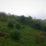Pluie et brouillard thumbnail