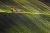 Italian Landscape (emanuelezallocco) Tags: landscape hills sunlight light colline regione marche marchigiana campagna countryside primavera spring