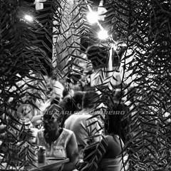 DSC08014 (O KDUKO) Tags: araraquara blackandwhite blackandwhitephotography pictureoftheday blackandwhitephoto photography bnwcaptures monochrome monochromatic bw bwstyles artgallery visualart bwphotooftheday photoshoot bwstyleoftheday aesthetics streetphotography arts sonyilce3000