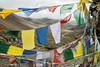Prayer flags and river on the way to Nyile La pass - Thimphu District - Snowman Trek - Bhutan (PascalBo) Tags: nikon d500 asie asia southasia asiedusud drukyul drukgyalkhap bhutan bhoutan འབྲུག་ཡུལ། འབྲུག་རྒྱལ་ཁབ་ snowman trek trekking hike hiking lunana thimphu himalaya himalayas jigmedorjinationalpark clouds nuages river rivière buddhism bouddhisme religion outdoor outdoors pascalboegli
