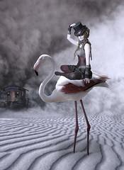 Flamingo Rider (Cat Girl 007) Tags: flamingo surreal pink art landscape composite sky bird animal fantasy extreme surrealism standing sitting photomanipulation dream fairytale magical person punk woman steampunk dreadlocks costume carnival circus freakshow