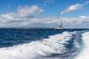 PCLA-20180426-0077-2048px (Philippe Clabots (#PhilippeCPhoto)) Tags: philippecphoto bateau boat horsbord ilemaurice ileplate mauritiusisland philippec rapide ship transport vacances