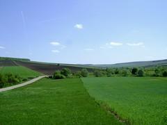 ogoarele patriei (băseşteanu) Tags: ogor ogoare land field agriculture agricultura primavara spring farming peisaj landscape verde green aprilie