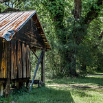 The Cabin thumbnail