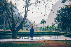 Wat Pa Tam Wua (dogslobber) Tags: yellow wat pa tam wua mae hong son thailand vipassana meditation retreat south east asia buddhism buddha