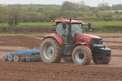 Case Puma 215 Tractor with a Lemken Rubin 9 Disc Cultivator (Shane Casey CK25) Tags: case puma 215 tractor lemken rubin 9 disc cultivator midleton traktor tracteur traktori trekker trator county cork ciągnik casenewholland cnh red sow sowing set setting drill drilling tillage till tilling plant planting crop crops cereal cereals ireland irish farm farmer farming agri agriculture contractor field ground soil dirt earth dust work working horse power horsepower hp pull pulling machine machinery grow growing nikon d7200