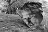 Concave Or Convex? (peterkelly) Tags: digital northamerica canon 6d bw guelph artgalleryofguelph ontario canada macdonaldstewartartcentre donaldforstersculpturepark mask evanpenny sculpture art installation face slope