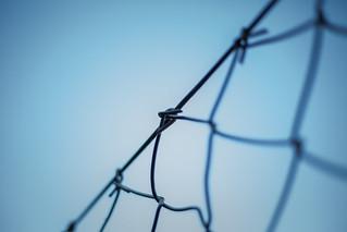 Ein Zaun Ist Eine Leiter In MEIN Blaues Paradies